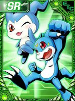 Chibimon and V-mon RE Collectors Card.jpg