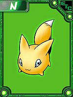 Pokomon Collectors Card.jpg