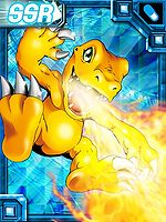 Agumon ex collectors card.jpg