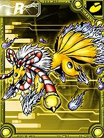 Kyubimon Collectors Card.jpg
