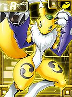 Renamon ex collectors.jpg