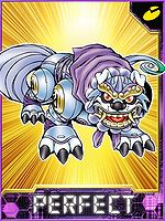Caturamon Collectors Perfect Card.jpg
