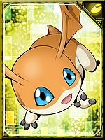 Patamon re collectors card.jpg