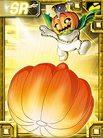 Pumpmon collectors card2.jpg