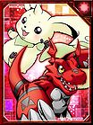 Terriermon and Guilmon RE Collectors Card.jpg