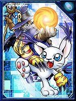 Wizarmon and Tailmon RE Collectors Card.jpg