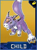 Dorumon Collectors Child Card.jpg