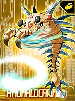 Anomalocarimon ex collectors card.jpg