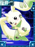 Terriermon ex collectors card.jpg