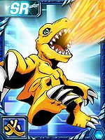 Agumon re collectors card2.jpg