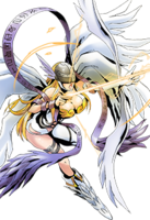 Angewomon collectors.png