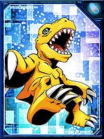 Agumon re collectors.jpg