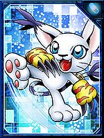 Tailmon re collectors card.jpg