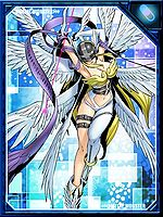 Angewomon re collectors card.jpg