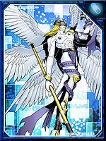 Angemon re collectors card.jpg